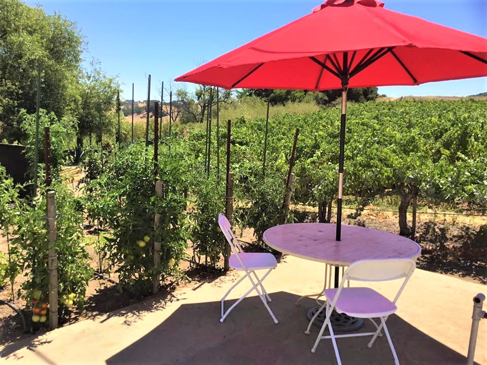 """Al DeRose, co-owner of DeRose Vineyards, said, """"All of our tables or tasting stations are six feet or further apart. Everything gets sanitized between customers."""