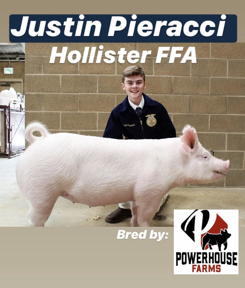 Justin Pieracci, sophomore at San Benito High School, posing with his market hog. Photo provided by Justin Pieracci.