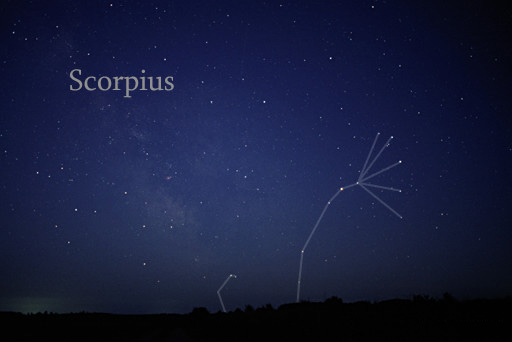 Scorpius constellation. Image courtesy of Wikimedia Commons.