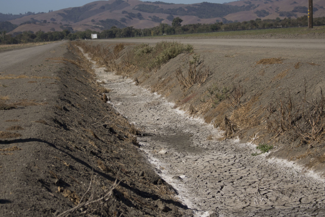 Contaminants from agricultural chemicals that turn surface white are collected in a channel that leads to the Pajaro River. Photo by Noe Magaña.