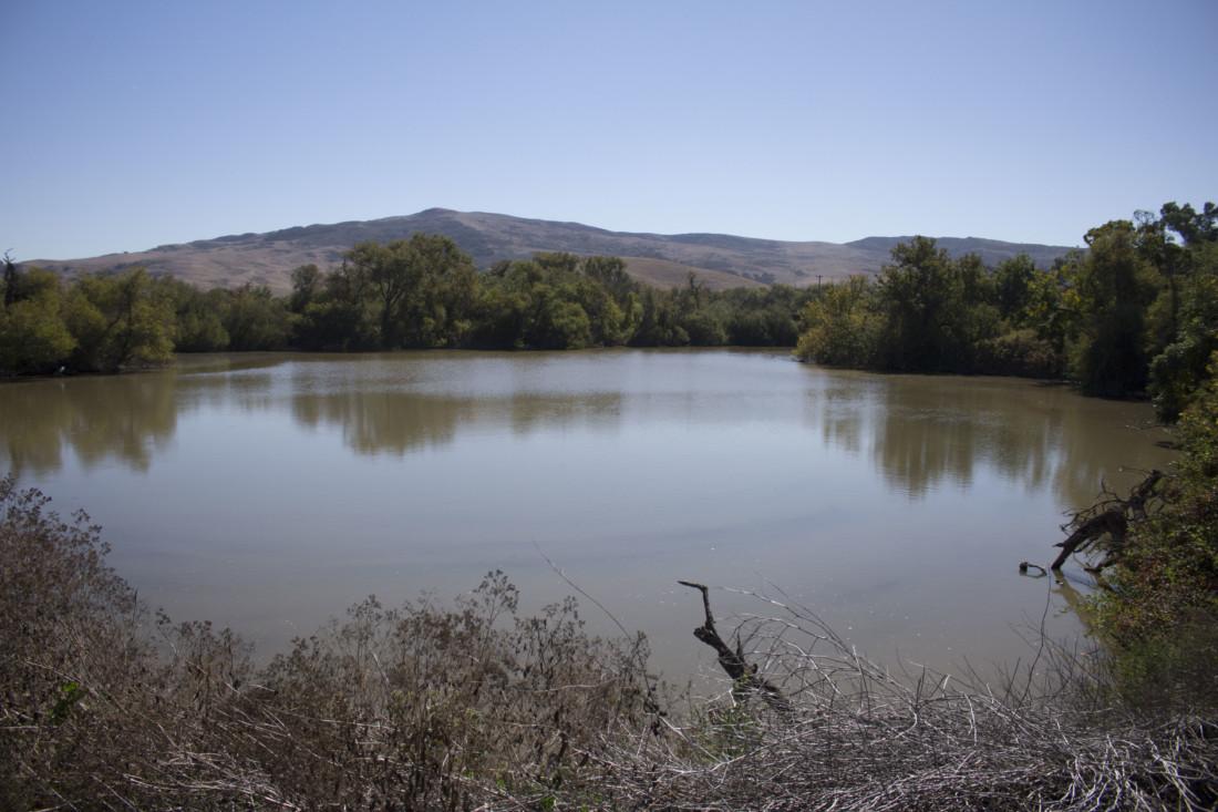 Pajaro River lagoon near the Strada Verde project. Photo by Noe Magaña.