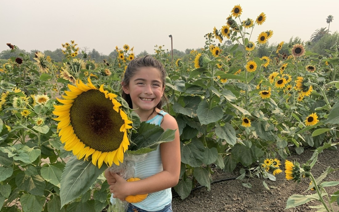 Alexa Gomez with a large sunflower at Swank Farms. Photo by Robert Eliason.