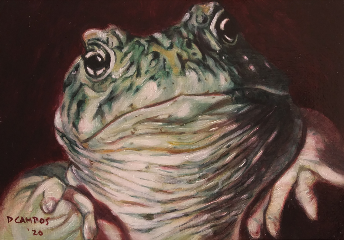 Dan Campos—Toad. Courtesy of SBC Arts Council.