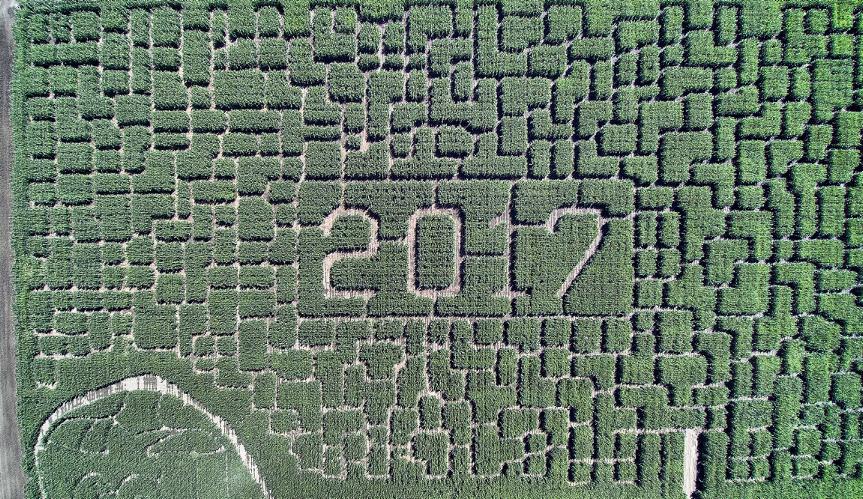 2017 corn maze at Swank Farms. Photo by Robert Eliason.