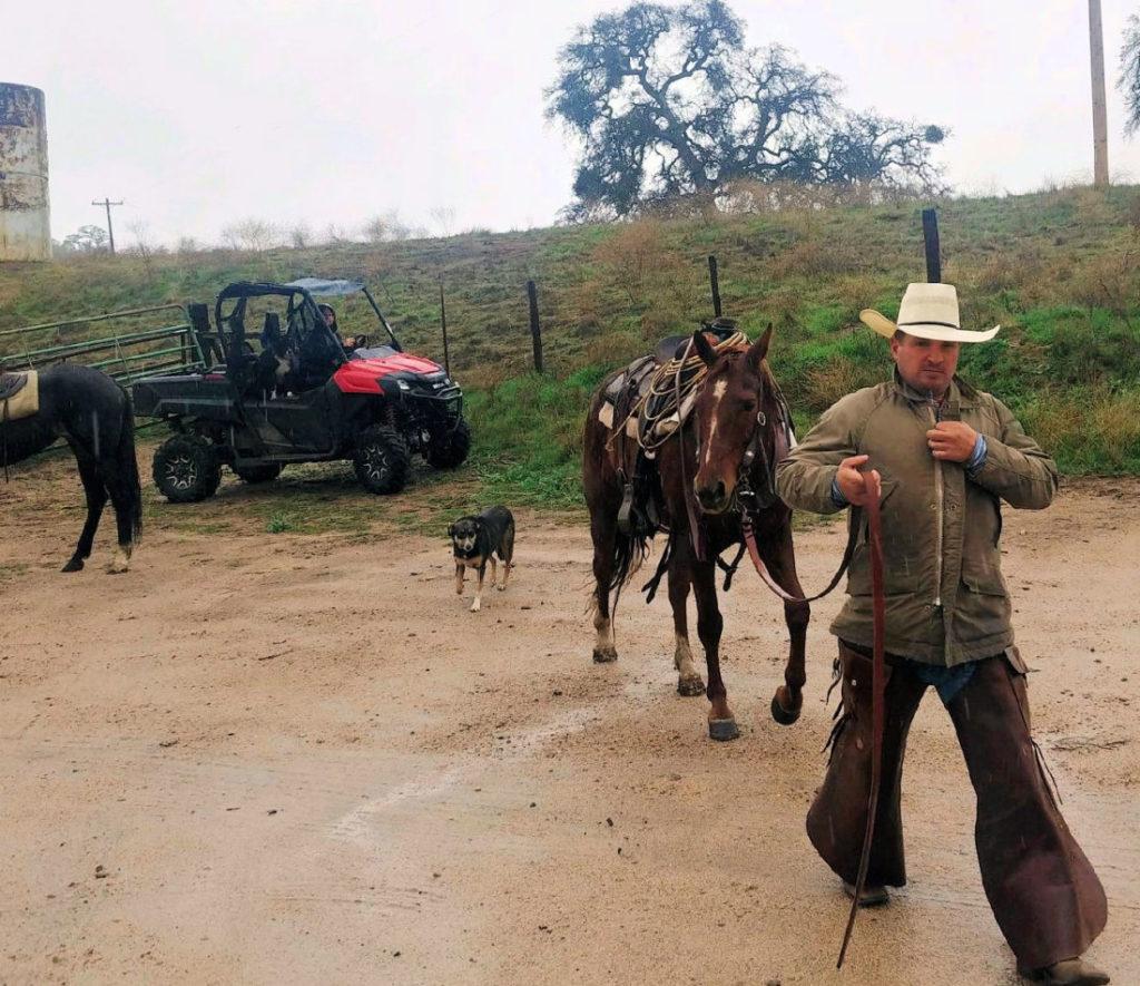 Joe Spencer returning from gathering cattle on horseback. Photo courtesy of Karminder Brown.