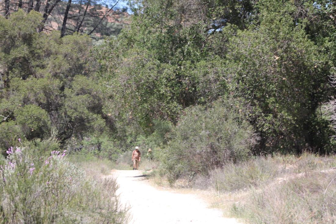 Hikers on Hain Trail. Photo by Carmel de Bertaut.