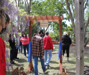 Staff walk through to the new park area. Photo by Carmel de Bertaut.
