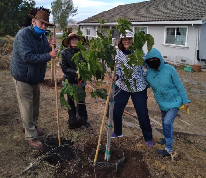 (L-R) Steve Dunbar, Edie Matson, Terry Giannetto, and Connie Bishop (Vera's niece) plant a fig tree in Vera Bradley Frass's honor. Photo courtesy of Barbara Taddeo.