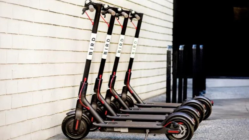 The 12-month pilot program will involved 50 Bird scooters being placed around Hollister. Photo courtesy of Bird Rides.